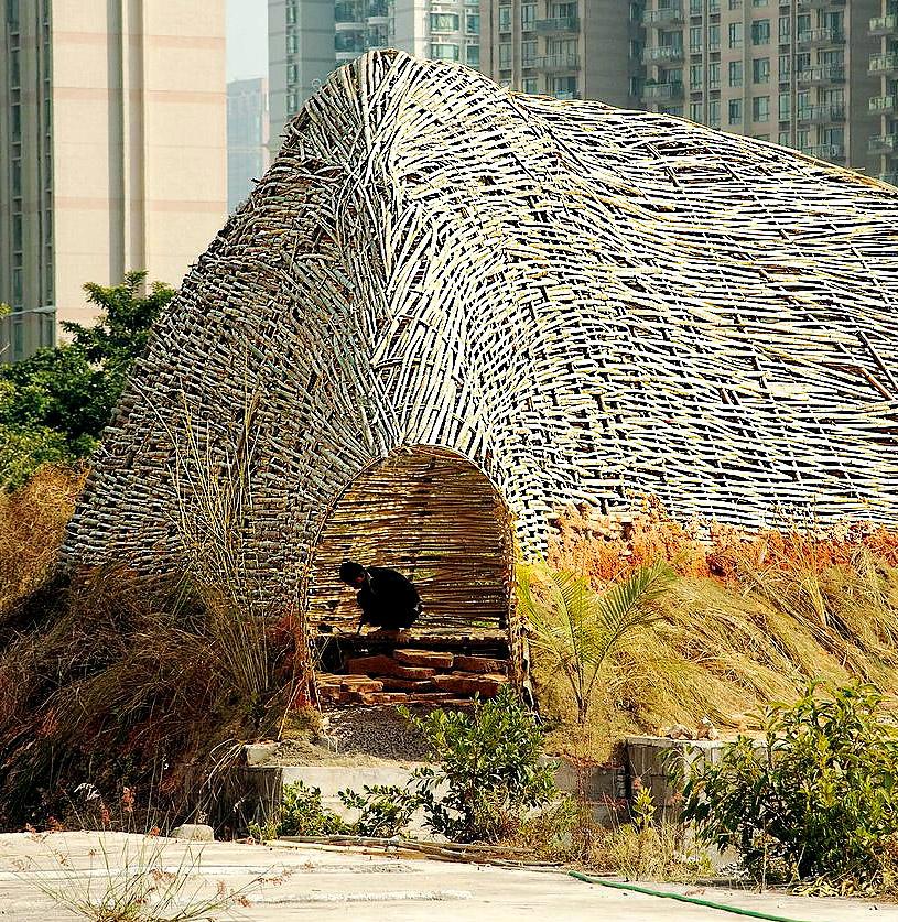 Bug Dome, M. Casagrande. © Nikita Wu